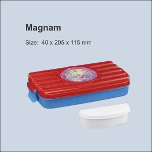 Magnam